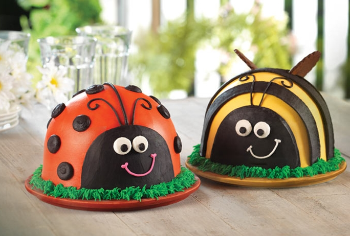 LadyBug and Bumble Bee Cake